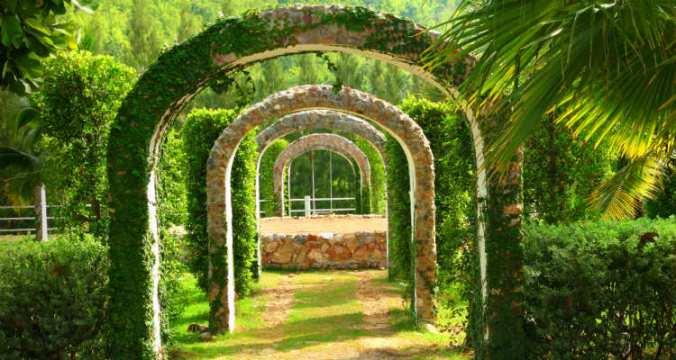 Colonnade green adj